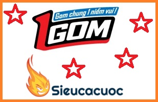1gom - 1gom.com - 1gom.us vào bóng nhanh